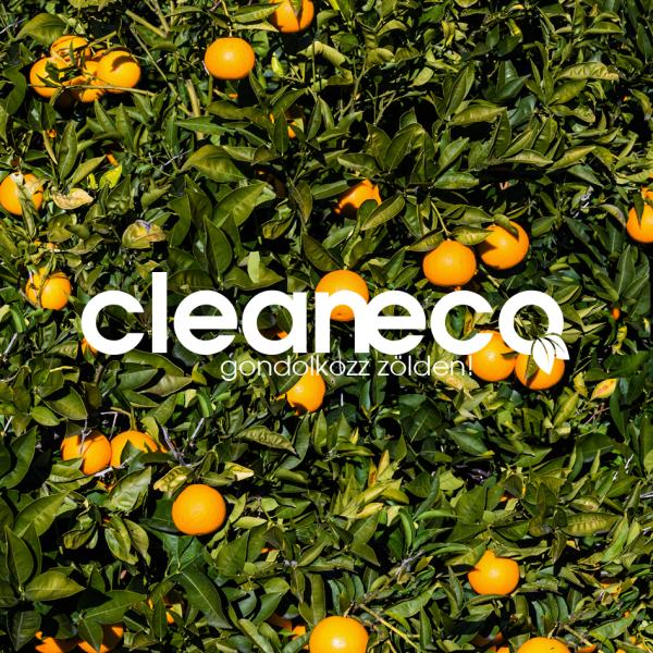 Cleaneco Organic Floor Soap, 1 L